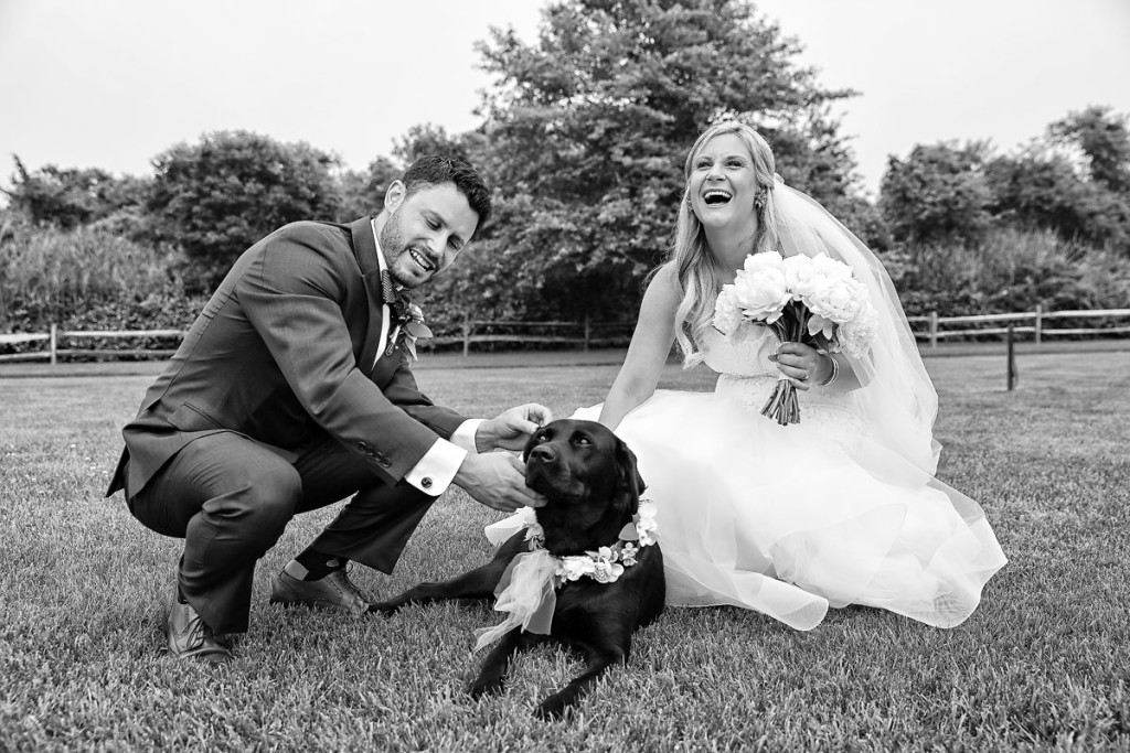 dog-at-the-wedding-01